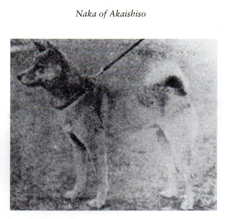 1Naka of Akaishiso